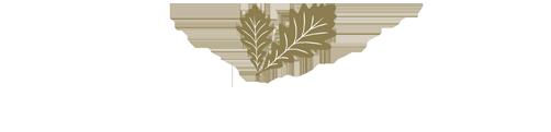 Perennial Wealth –  Financial Adviser Logo